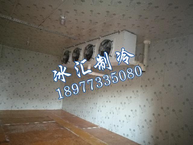 柿饼冷冻库安装.jpg