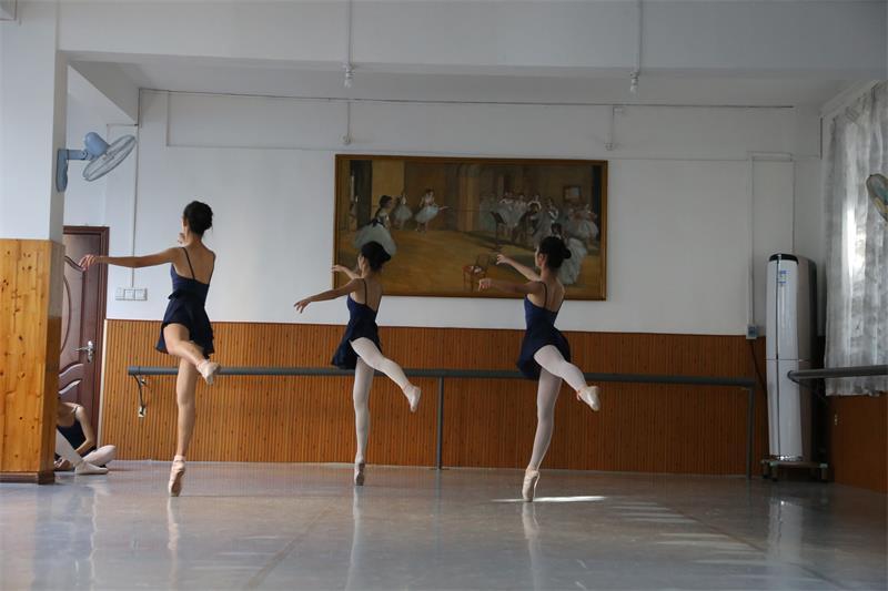 八级芭蕾舞培训班