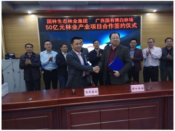 2017年12月,與廣西國有博白林場簽訂五拾億林業產業項目合作