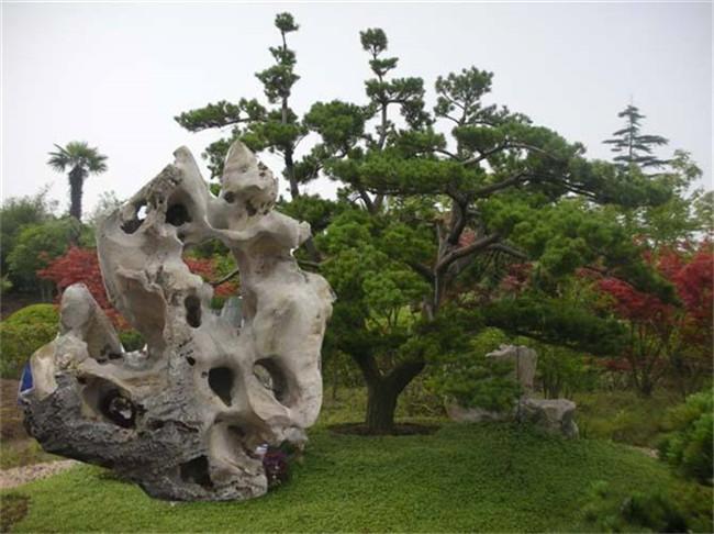 青岛草地假山