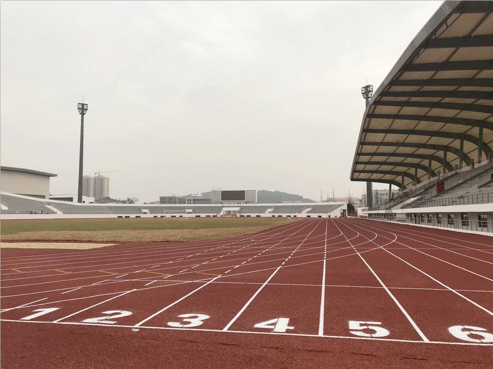 塑胶跑道案例  2018广西贺州平桂文体中心 400混
