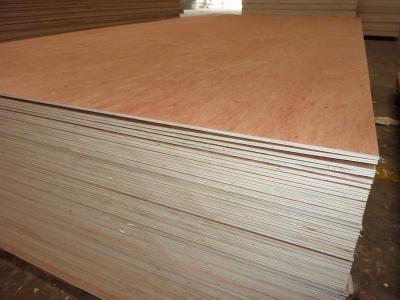 南宁桉木生态板