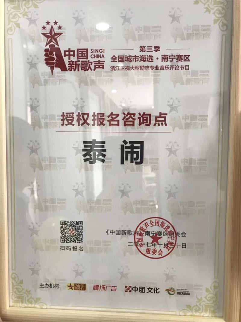 中国新歌声制定咨询点