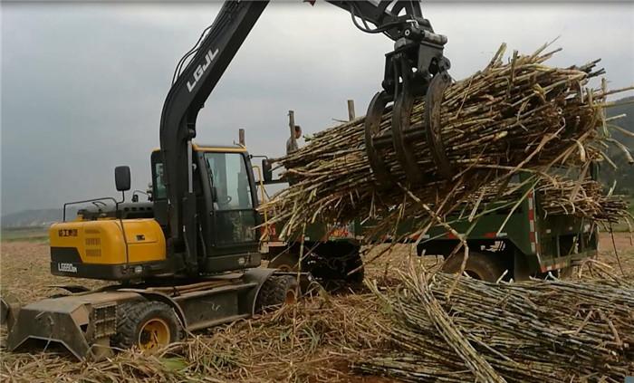 轮挖抓取甘蔗
