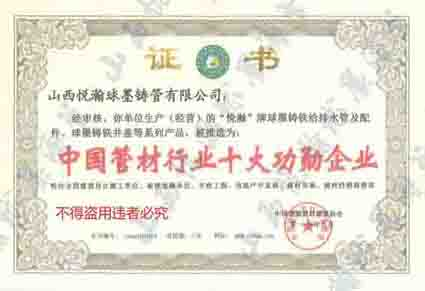 中国管材行业十大功勋企业.jpg