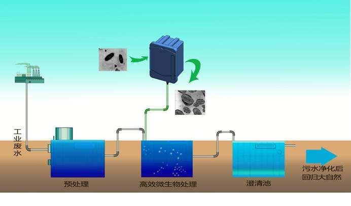广西废水处理betvictro伟德app下载.jpg