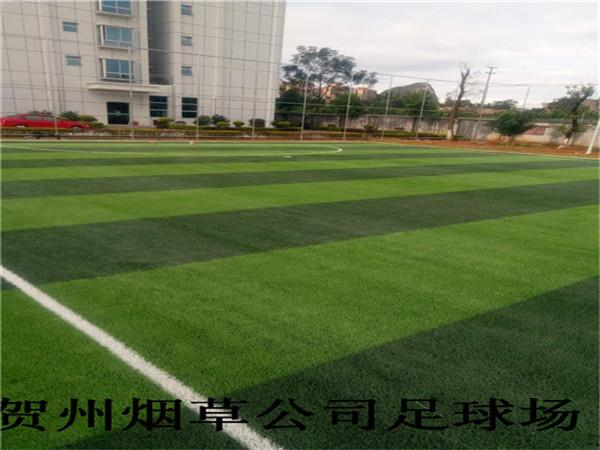 贺州烟草公司足球场