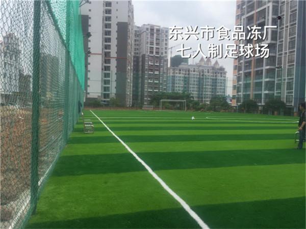 东兴市食品冻厂七人制足long88com