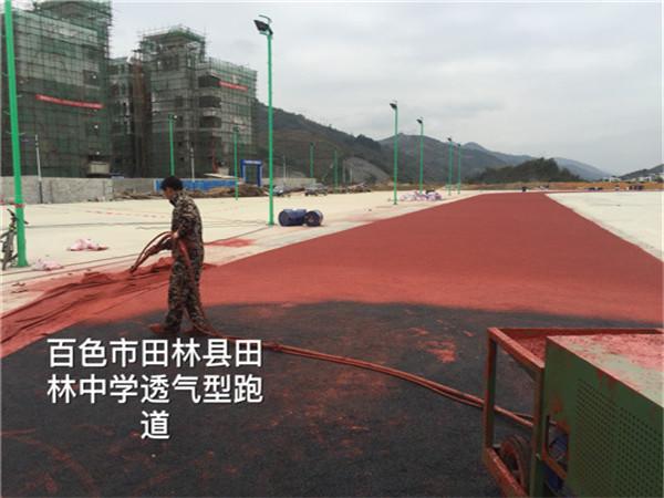 百色市田林县田林中学透气型跑道龙8国际备用网站中