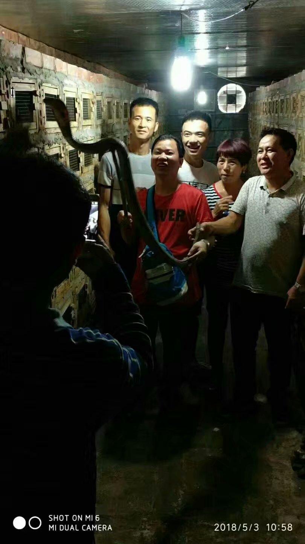 带学员到越南考察蛇品种