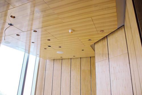 木纹铝单板, 铝幕墙 隔墙单板