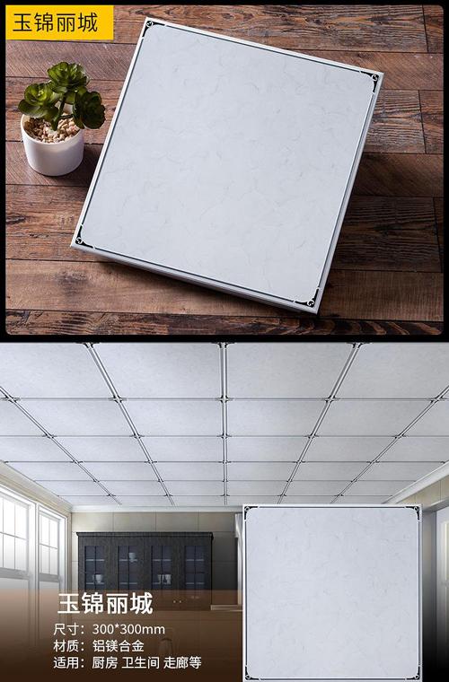 aluminium-ceiling14.jpg