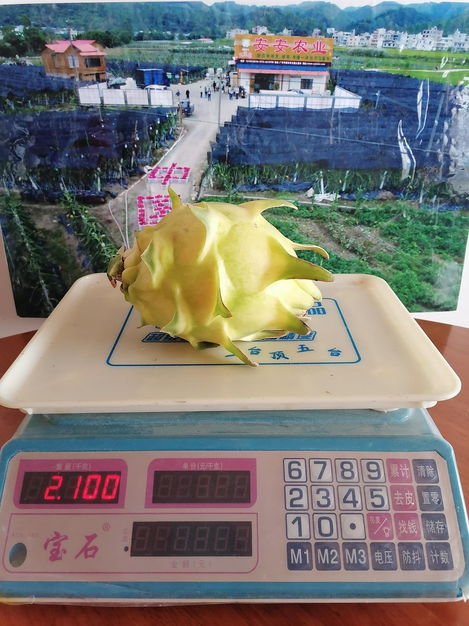 黄水晶-单果重量