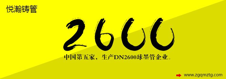 悦瀚铸管 dn2600型号3.jpg