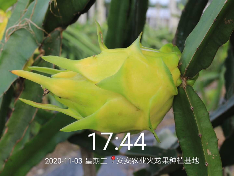 微信图片_20201108091108.jpg
