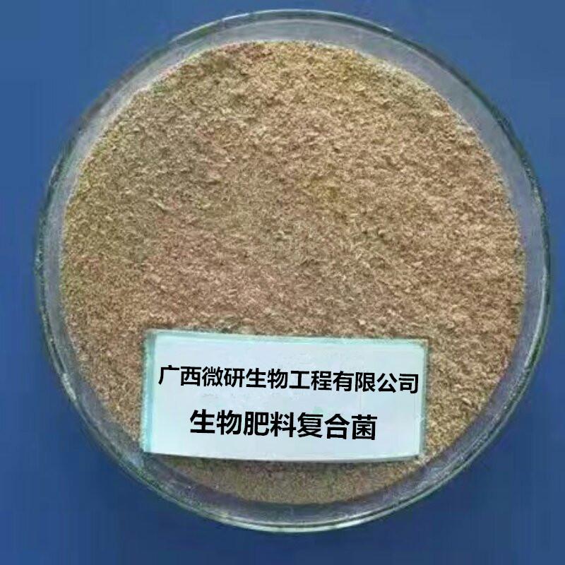 生物肥料复合菌