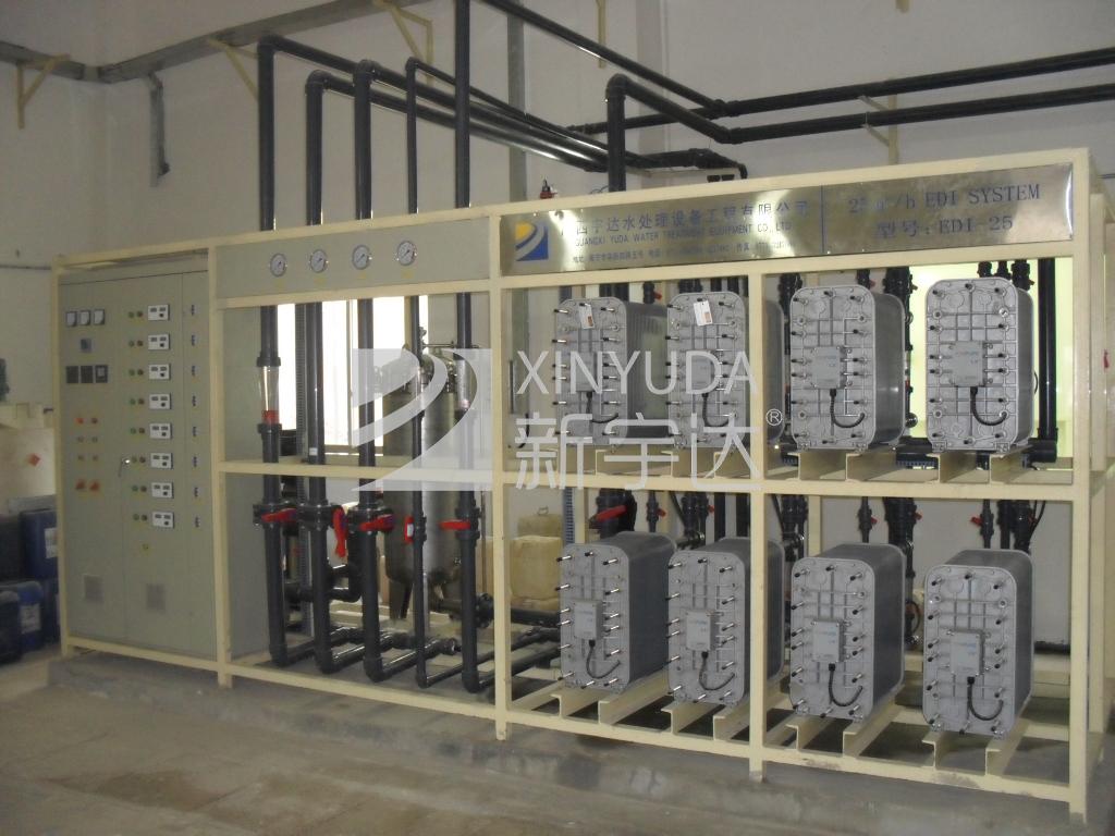 东亚糖业1500t/dEDI连续电除盐装置