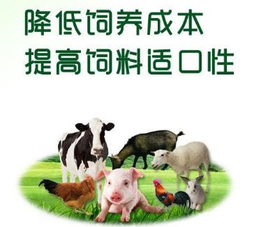 饲料豆粕发酵剂