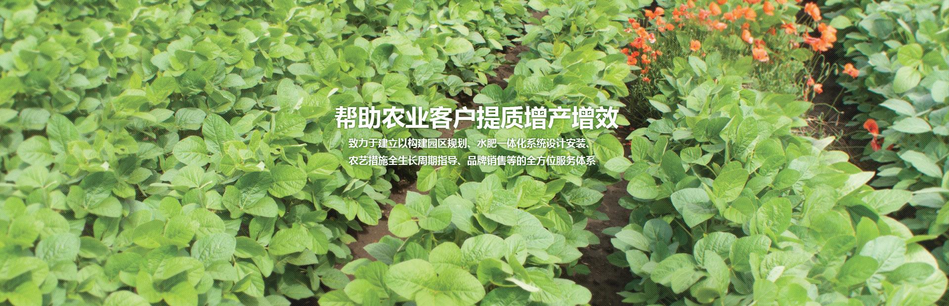 广西灌溉,南宁滴灌,广西农业灌溉,广西喷灌
